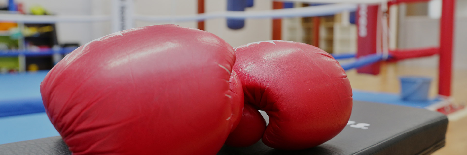岐阜大垣神戸町のフィットネスボクシングジムセブンスヘブン7thheaven